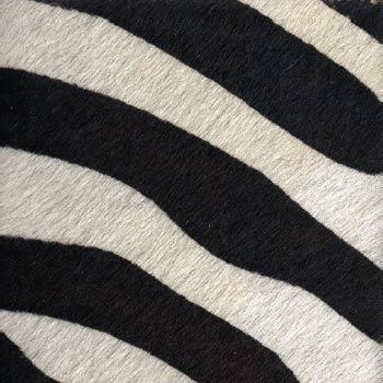 Imitation zebra Hand painted